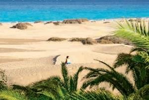 TopSeller Angebot Gran Canaria