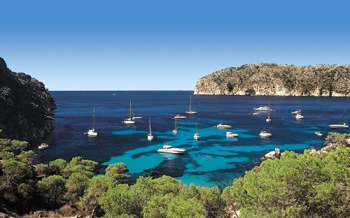 TopSeller Angebot Mallorca