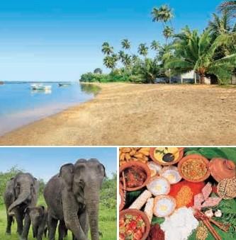 Shri Lanka - Tropenparadies im indischen Ocean